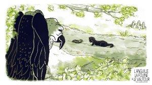 L'anguille, la fouine et le vautour - Image 01